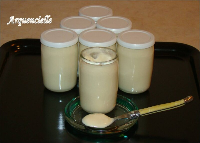 Yaourts vanille avec activia vanille