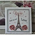 Sal love paris