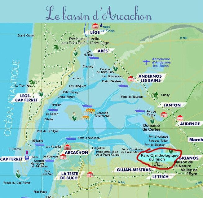 Carte-Bassin-Arcachon