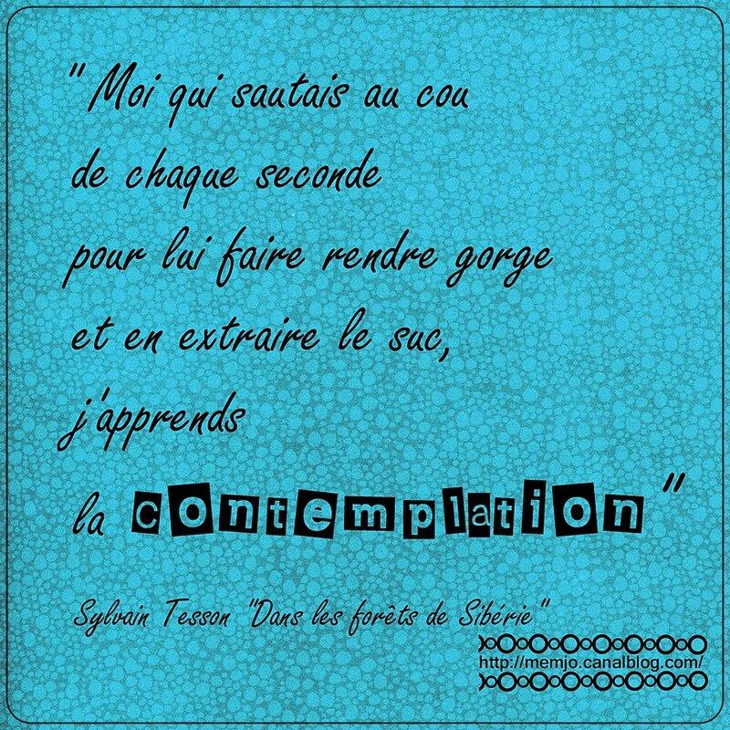 Citation Tesson S Temps Contemplation