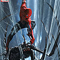 Secret wars - spiderman 2