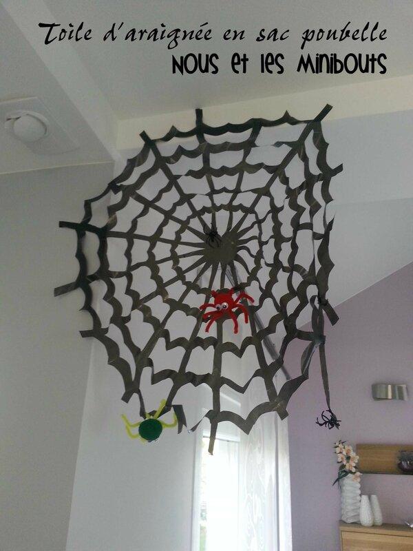 toile d'araignée sac poubelle