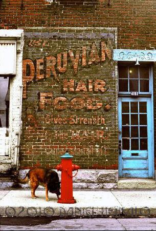 Rachel_et_Saint_Andr__Peruvian_Hair_Food_Daniel_Heikalo_1977