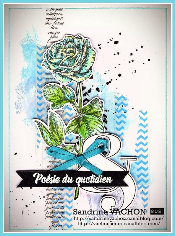 Sandrine VACHON 679 DT PCC (1)