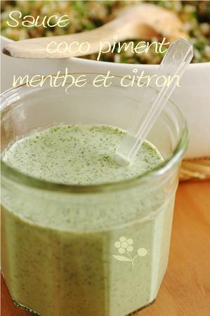 Sauce coco-piment-menthe-citron_1