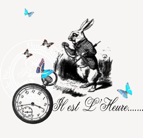 Lapin alice