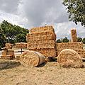 Rhône Les Provence (Vaucluse)
