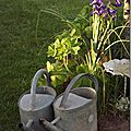 Windows-Live-Writer/jardin_6BD4/DSCF3553_thumb