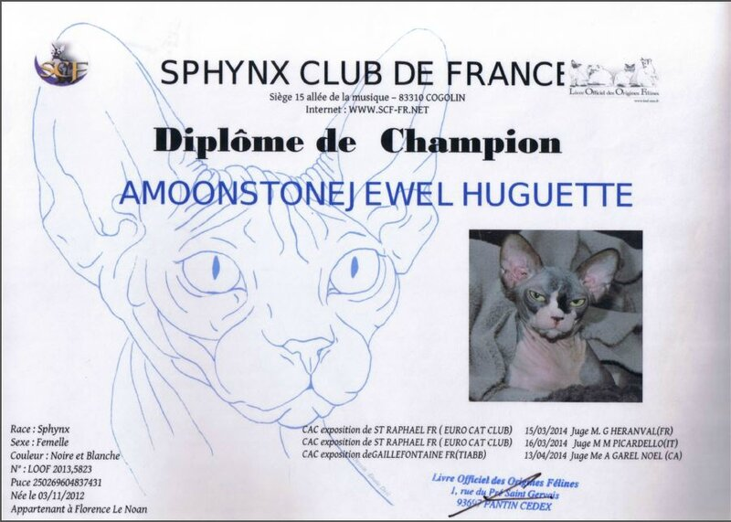 ch huguette2