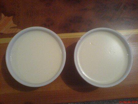 yaourts