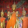 2008-02-12 Luang Prabang - Vat Xieng Thong 047