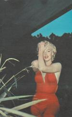 1954-PalmSprings-HarryCrocker_home-by_ted_baron-red-024-1