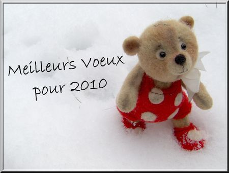 Voeux_2010