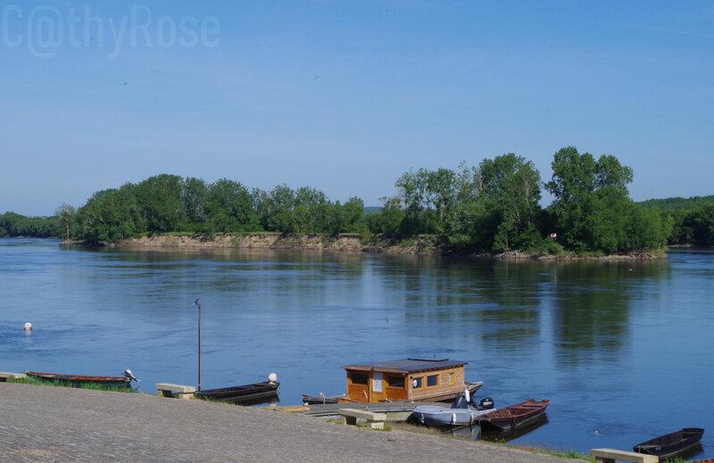 && Montjean sur Loire (5)