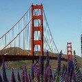 San Francisco en fête pour l'arrivée de la flamme olympique 2