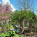 Windows-Live-Writer/Joli-printemps-au-jardin-_601C/20170402_133713_2