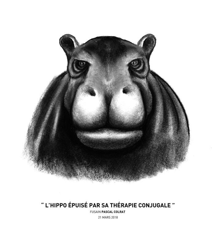 __l_hippo_e_puise__par_sa_the_rapie_conjugale__