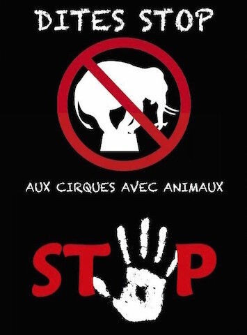 stop_animaux_cirques