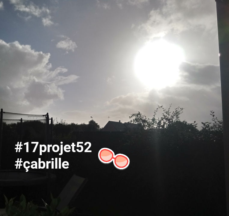 39 projet52 2017 - Ca brille
