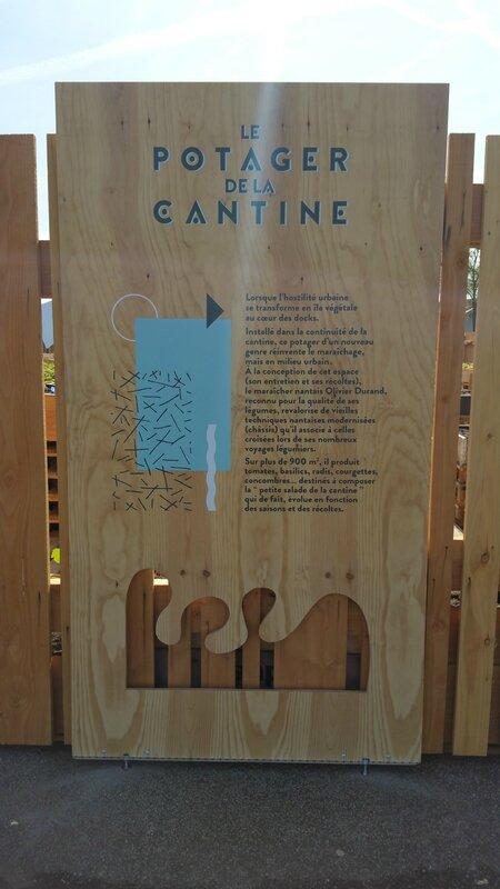 LVAN-Nantes-Cantine-Loire-Atlantique-Potager-1