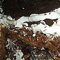Tarte sablee au chocolat, salidou et meringue suisse