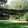 Jardin olbius riquier