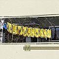 Maillots jaunes