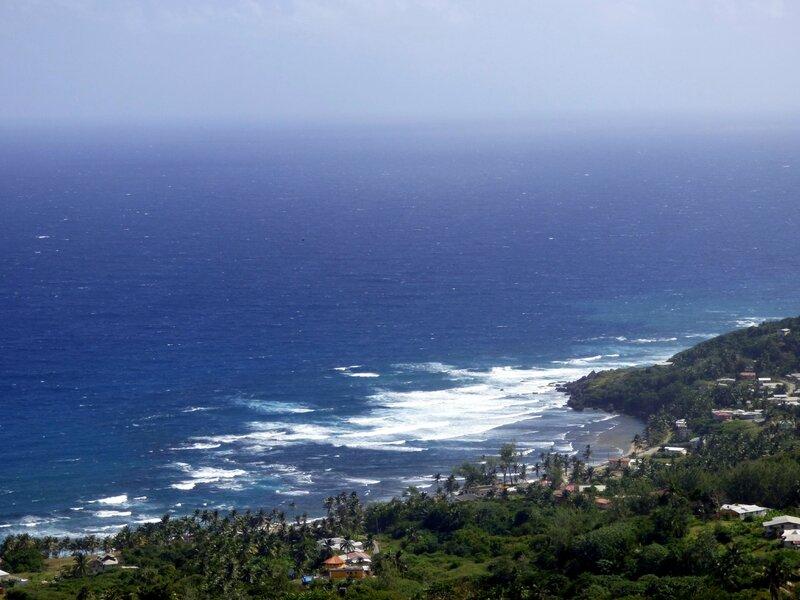 28 01 16 (La Barbade)041