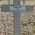 Joyeux louis (le blanc) + 02/06/1917 juvincourt (02)