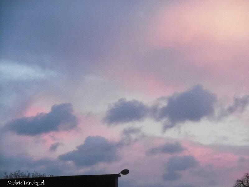 Ciel du soir rose et gris 161218