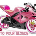 moto-blonde copie