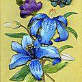 Cadre tissu lys bleu