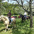 balade à cheval médiévale - Abbaye de Hambye (228)