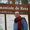 2008 forêt