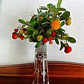 Bouquet d'arbouse