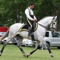 PENSION DRESSAGE