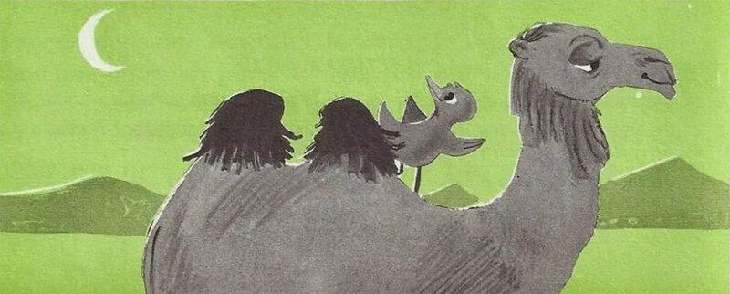 AEV 1617-25 chameau