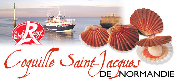 coquille_saintjacques_normandie_label_rouge__008576800_0940_08012013