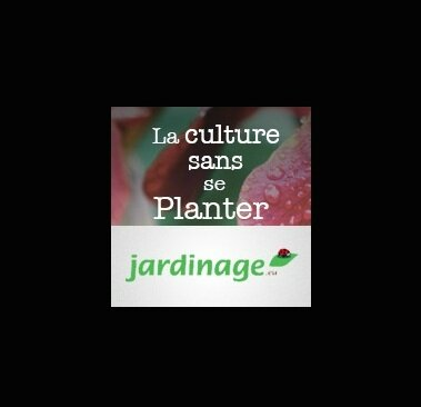 jardinage eu la culture sans se planter
