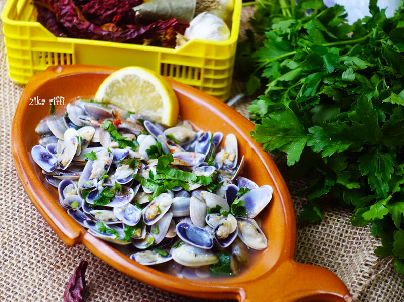 haricots de mer-coquillages-tellines
