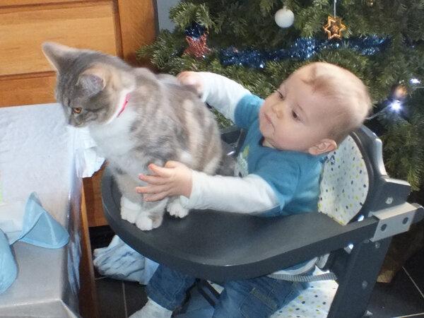 2 Enseigner le respect des animaux à mon fils ma bulle cosmeto mabullecosmeto