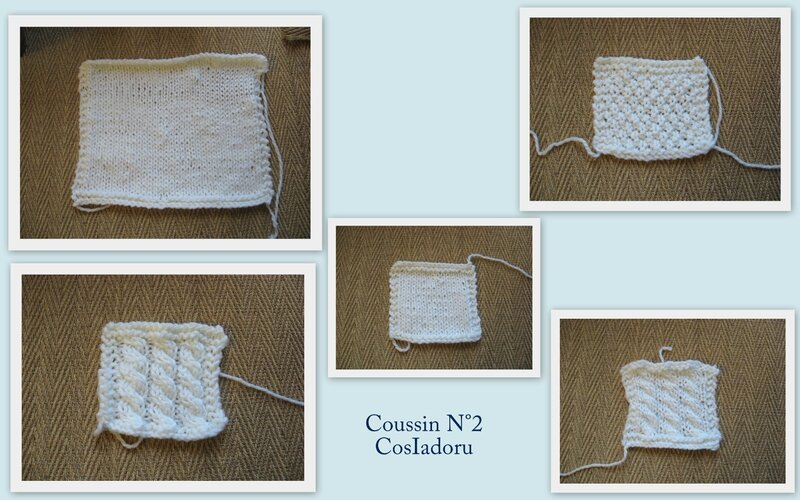 coussin N°2a