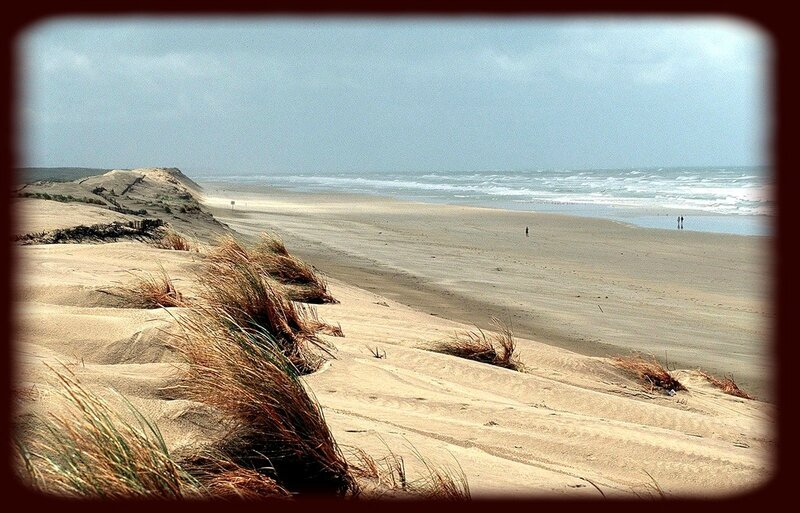 1008x646_illustration-plage-ile-oleron