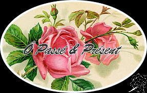 tampon rose OK
