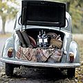 adventure-car-date-dream-fusca-Favim