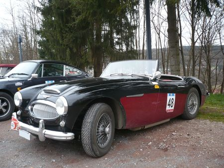 AUSTIN HEALEY 3000 MK2 roadster Bitche (1)