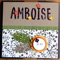 Mini album amboise