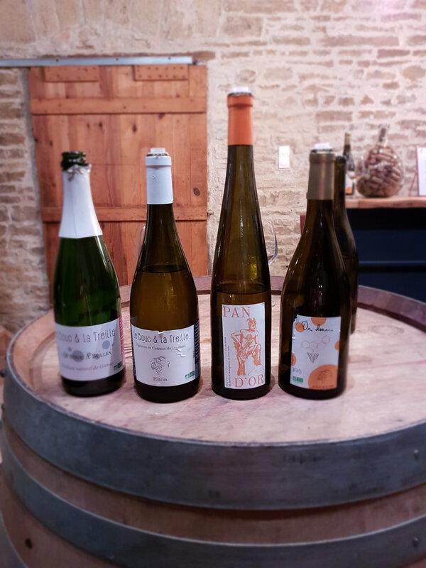 chez cathytutu inauguration nouveau caveau de degustation du vin le bouc et la treille poleymieux au mont dor (2)