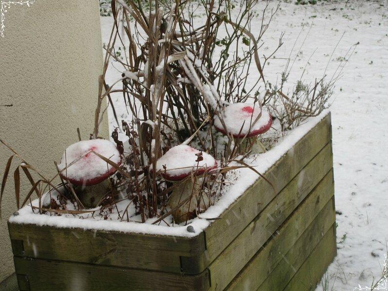 neige (54)