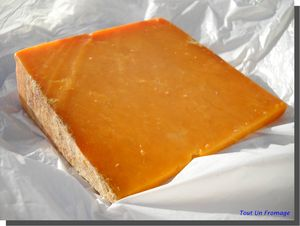 Red_Leicester